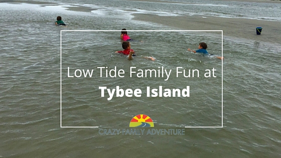 Low Tide Family Fun At Tybee Island