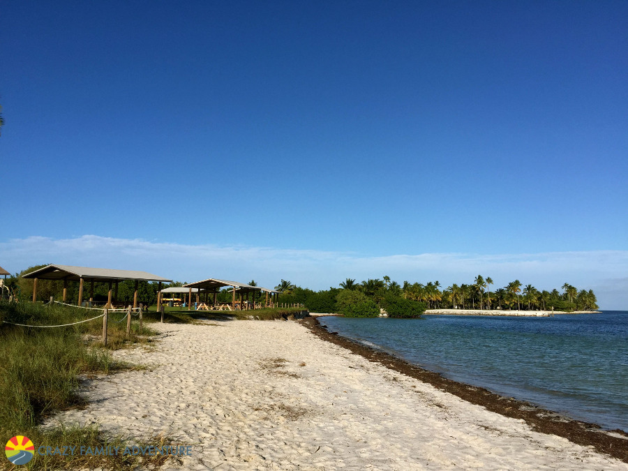 curry hammock is also a state park that is located in the middle keys  it u0027s a smaller state park with a nice little beach with soft golden sand  top 10 florida keys beaches   crazy family adventure  rh   crazyfamilyadventure