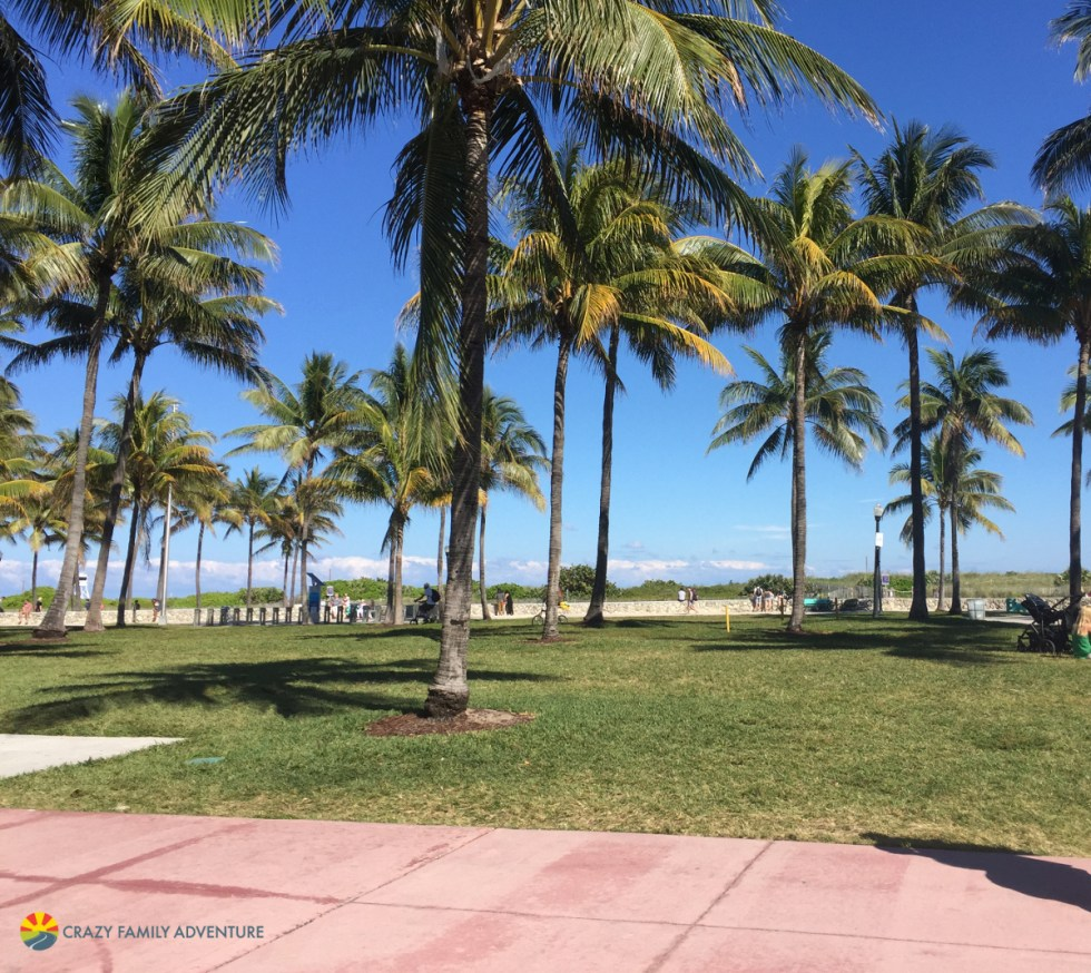 Visit South Beach in Miami on The Ultimate Florida Road Trip