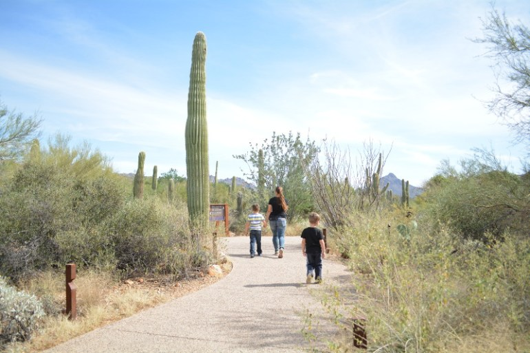 Arizona-Sonora Desert Museum should be on your list of things to do in Tucson with kids