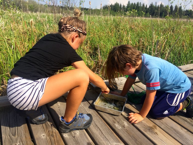 Explore the creatures in Ominik Marsh with this fun kit at Riding Mountain National Park