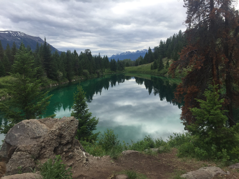 One of the lakes on the Valley of 5 Lakes in Jasper National Park