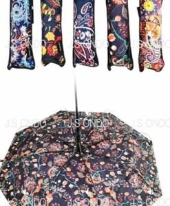 Paraguas-de-moda