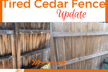 Tired Old Cedar Fence Update