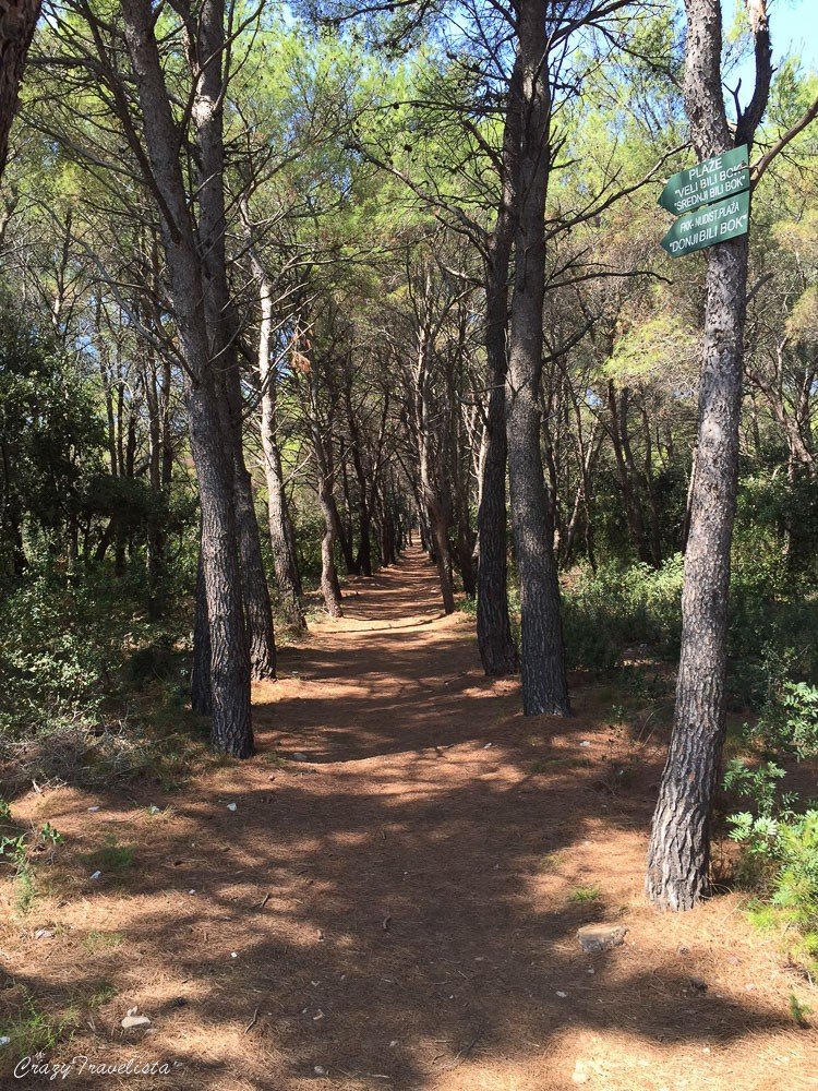 Proizd woods