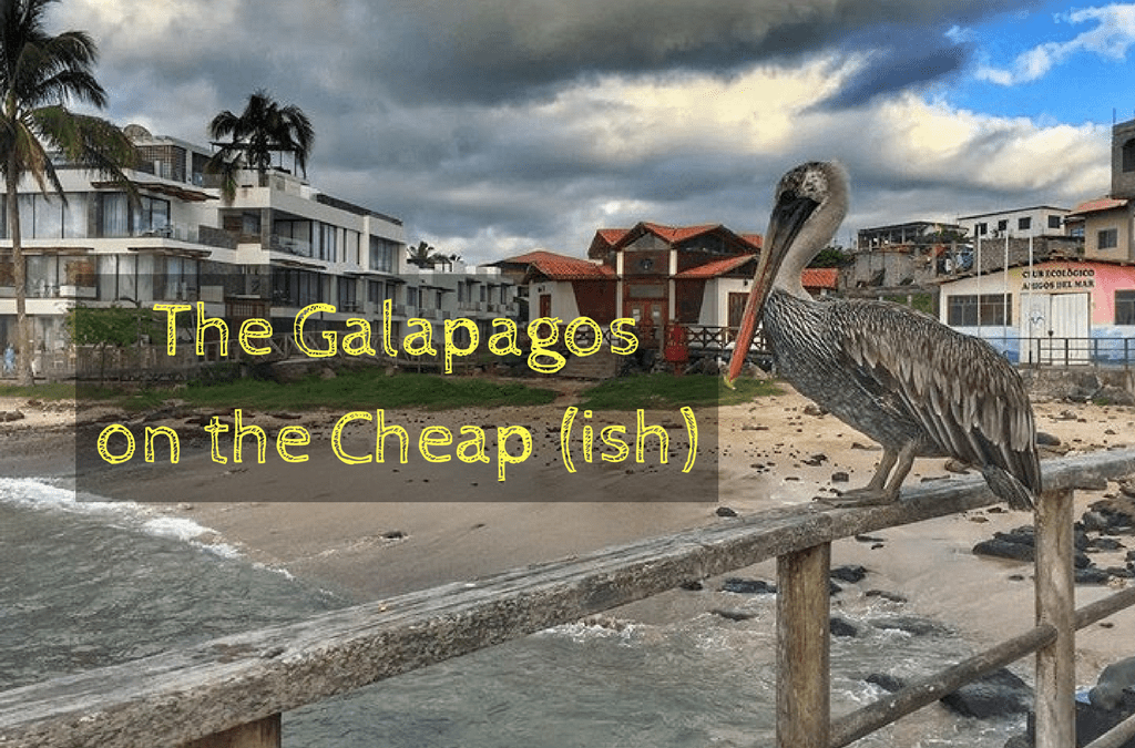 Solo Travel The Galapagos on the Cheap (ish): How I Did 7 Days/Nights for $994, Including Flights!