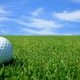 Golf Tournament for CRBA Toy Store