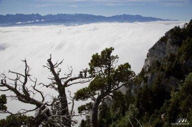 Mer de nuages 03