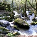 Ruta da Pedra e da Auga (Meis-Ribadumia)