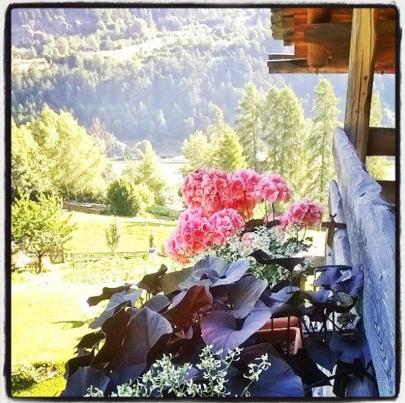 Cielo grigio con tutte le sue varianti sulla provincia milanese!..meno male che ci sono le foto ricordo dell'estate appena passata! - Obbiettiva