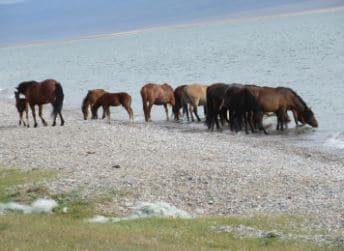 Tajikistan,Kyrghizistan lungo la via della seta