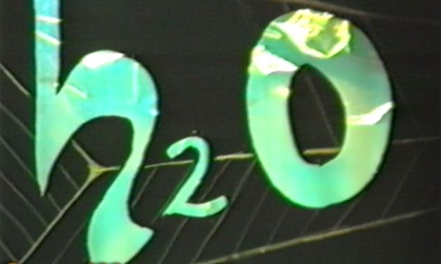 H2O in concerto 1991