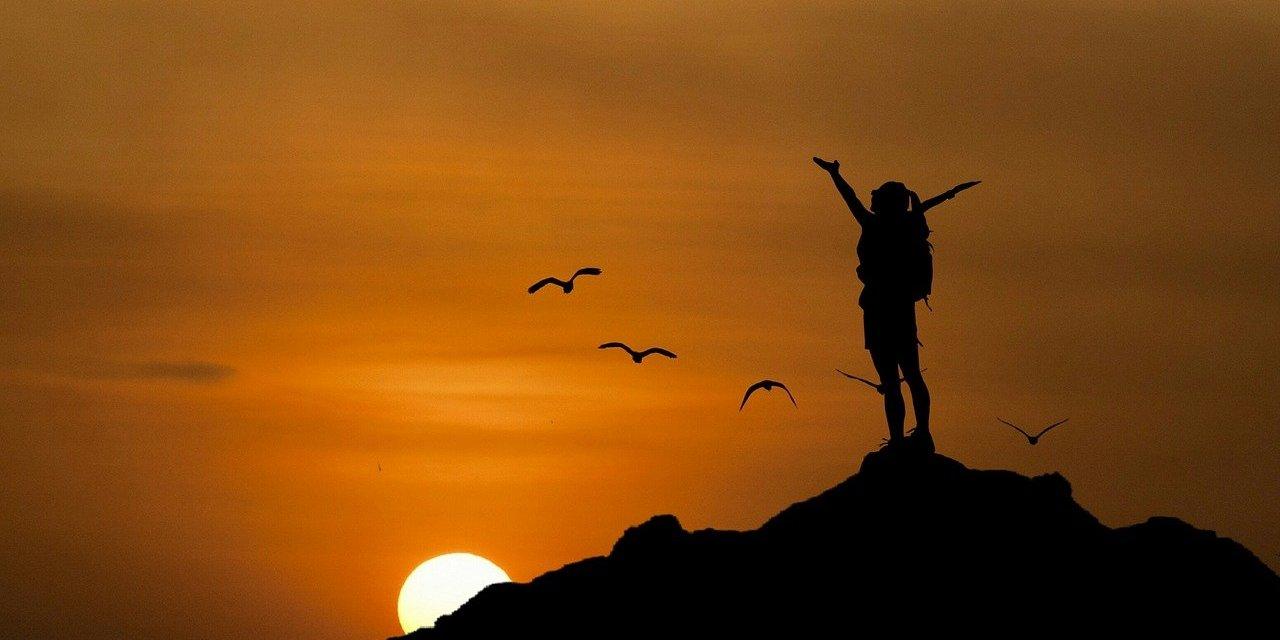 Volare in alto