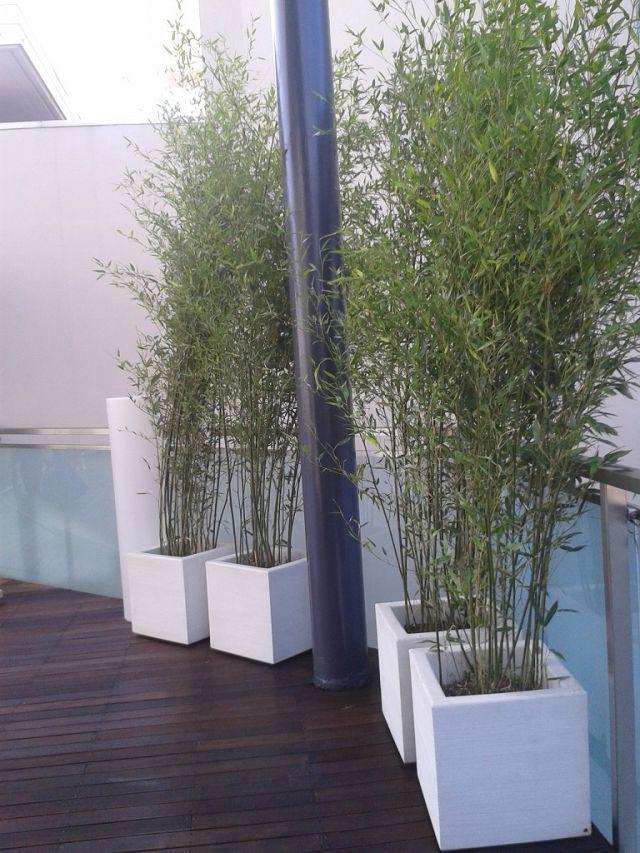 Crea il verde  Bergamo  Allestimento chiese terrazzi e