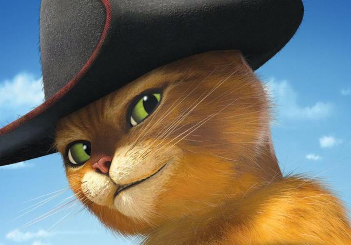 gatto_con_gli_stivali.jpg