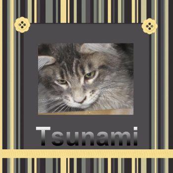 Tsuanmi - Pg 8