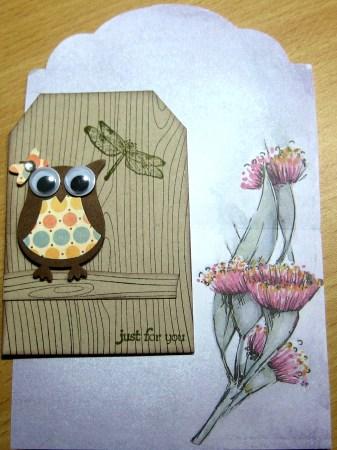 Owl ATC