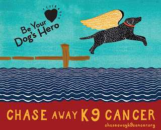 Chase Away k9 Cancer