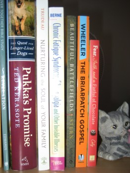 3-13-13 My Latest Book Reviews