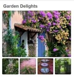 Garden Delights - Pinterest