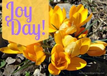 Joy Day