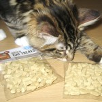 Magellan Finds Orijen Cat Treats