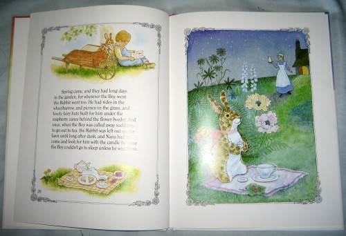 The Velveteen Rabbit Illustration