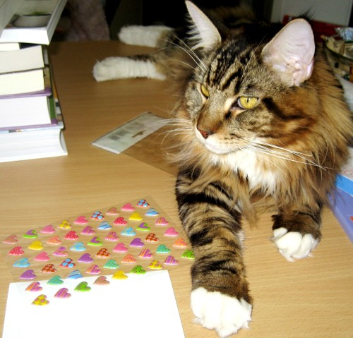 My Crafty Helper