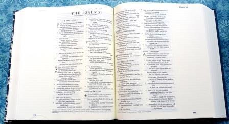ESV Journaling Bible 5 - Compressed Left