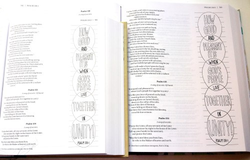 NIV Beautiful Word Coloring Bibles 4L