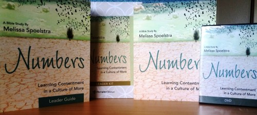 Numbers Bible Study Products