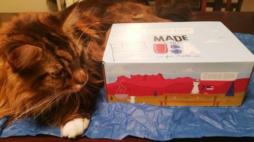 Magellan-Goody-Box-75-Create-With-Joy