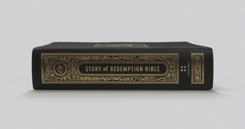 ESV Story Of Redemption Bible - Leather Spine