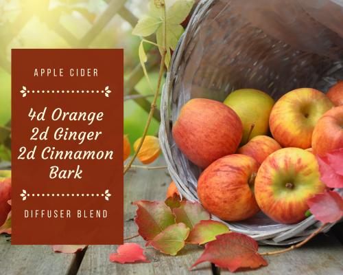 Tina Peterson - Apple Cider Diffuser Blend