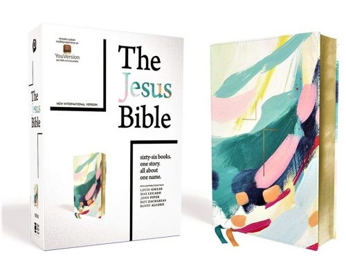 Jesus Bible - NIV Artist Edition
