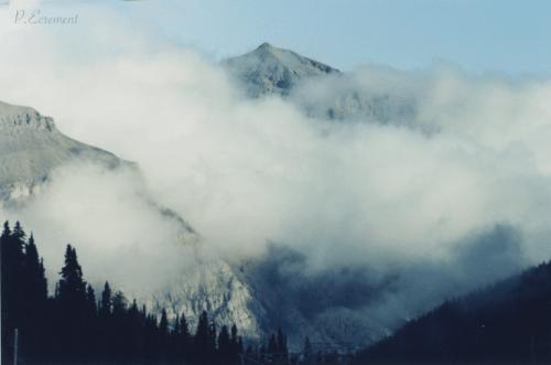 Pamela - Rocky Mountains Alberta Canada