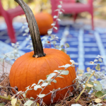 Autumn Vignettes