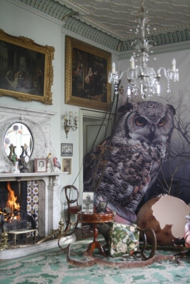 huge owl in living room