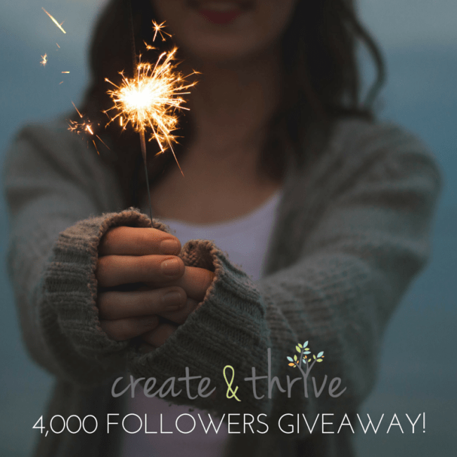 4,000 Followers Giveaway!