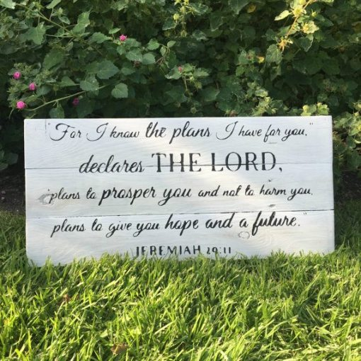 For I Know The Plans I Have For You | Faith + Scriptures
