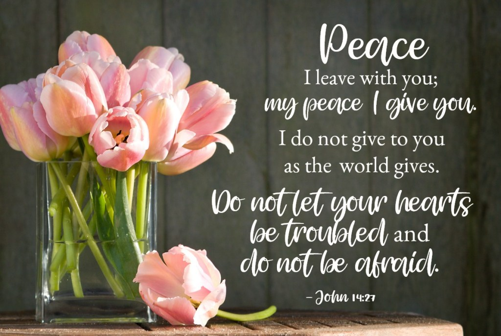 Bible Verses for Strength: John 14:26-27 But the Comforter, the Holy Spirit, whom the Father will send in my name, will teach you all things and will remind you of everything I have said to you. Peace I leave with you; my peace I give you. I do not give to you as the world gives. Do not let your hearts be troubled and do not be afraid.