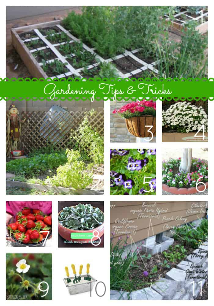 36 Tips And Ideas To Make Your Garden Grow