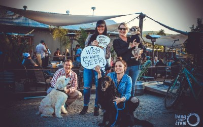 Bang The Drum Hosts Puppy Love: A Benefit for Woods Humane Society