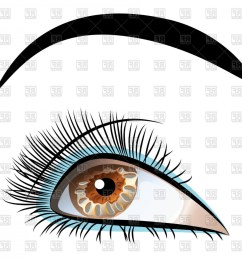 beautiful brown eye with long eyelashes and black eyebrows vector clipart [ 1440 x 1440 Pixel ]