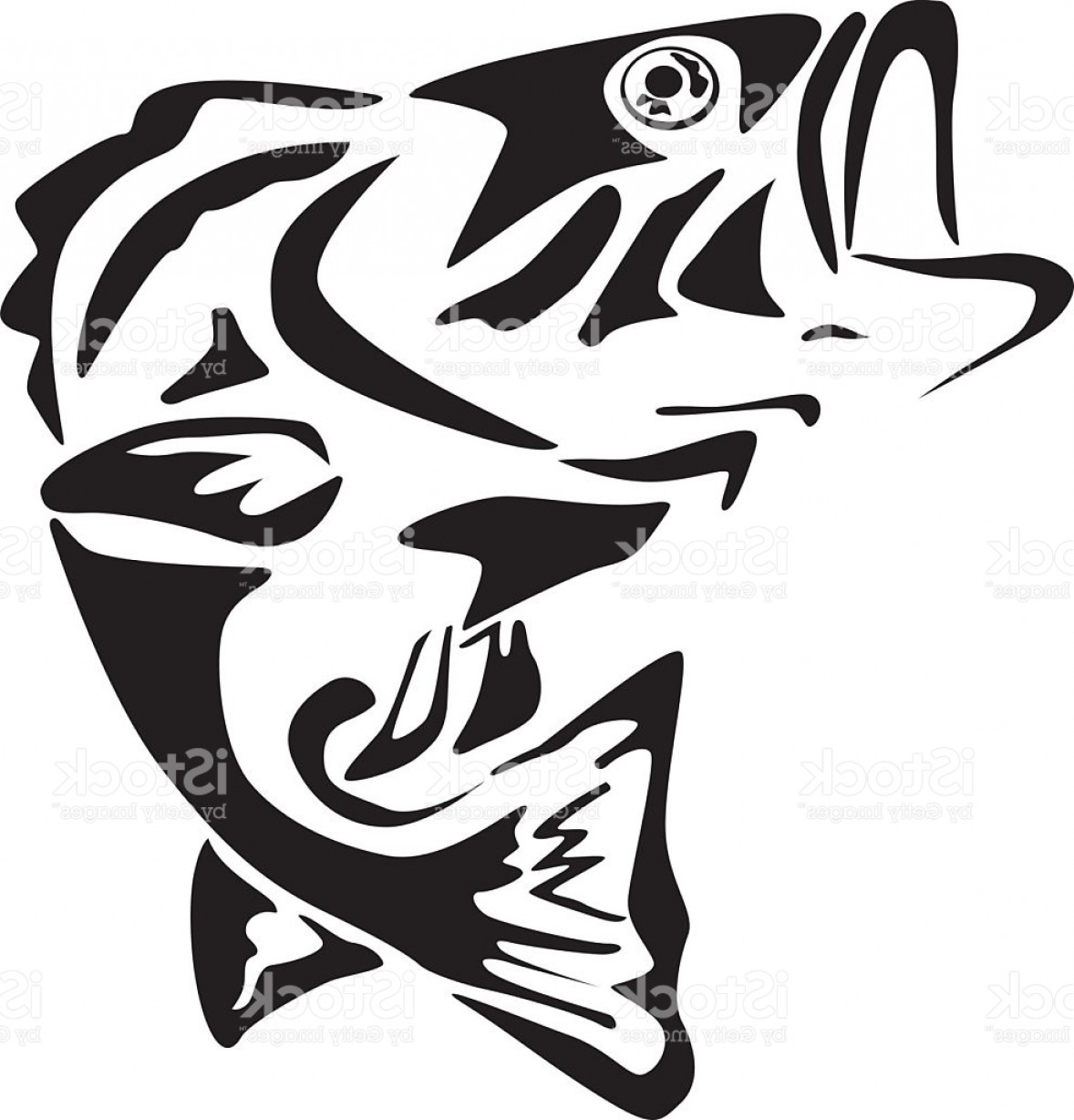 Fish Vector Graphic