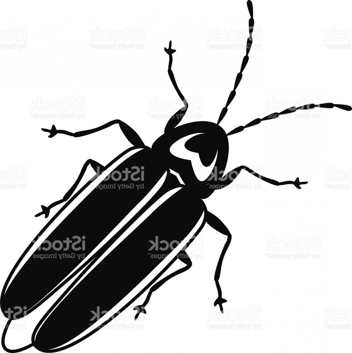 Vector Firefly Or Lightening Bug In Black And White Gm