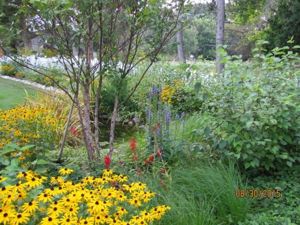 prairie gardens & rain garden contractors