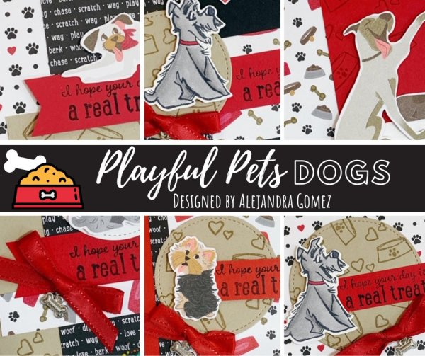 Playful Pets for Dog lovers