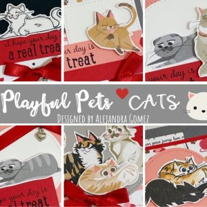 Playful Pets for Cat lovers