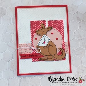 Kangaroo & Company Bundle and a challenge PP534